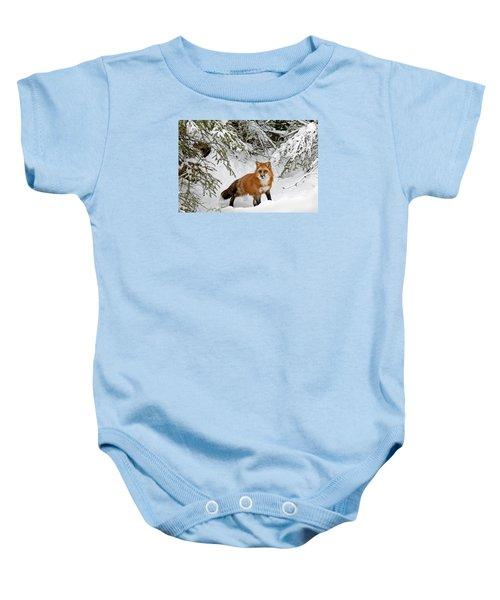 Red Fox In Winter Baby Onesie