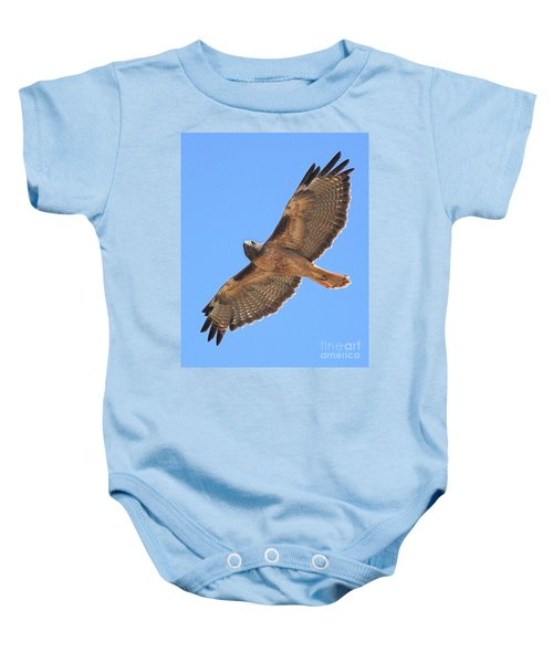 Red Tailed Hawk In Flight Baby Onesie