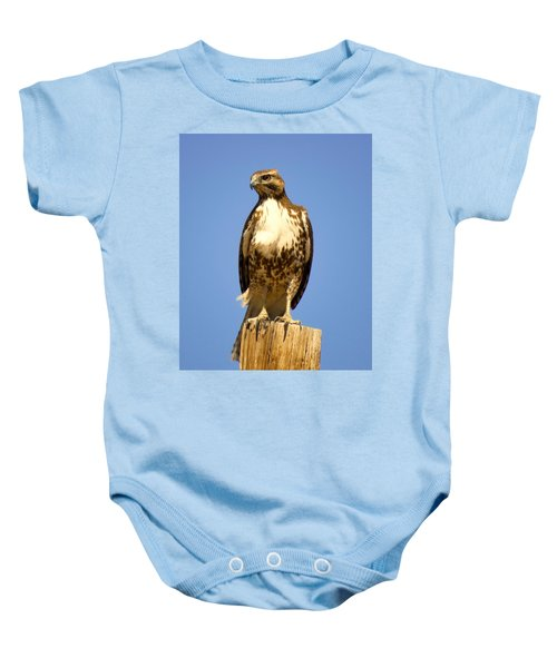 Red-tailed Hawk On Post Baby Onesie