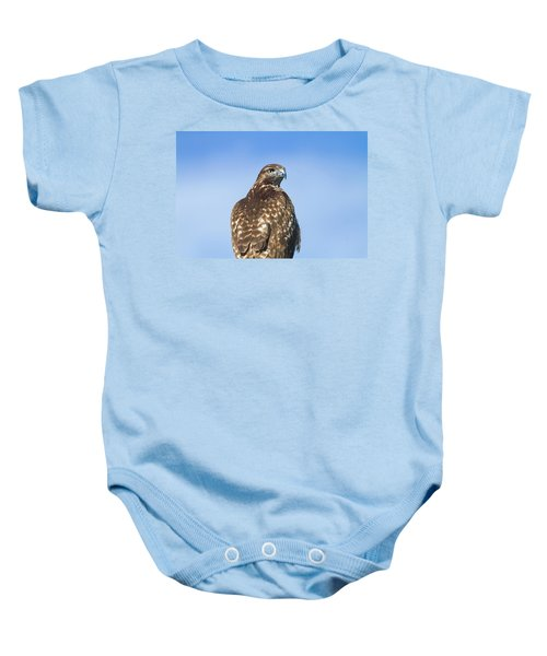 Red-tailed Hawk Perched Looking Back Over Shoulder Baby Onesie