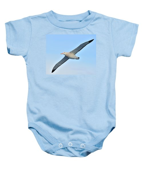 The Greatest Seabird Baby Onesie by Tony Beck