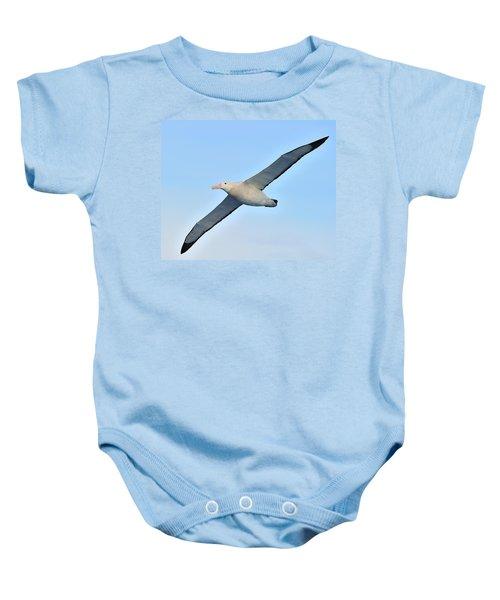 The Greatest Seabird Baby Onesie by Tony Beck