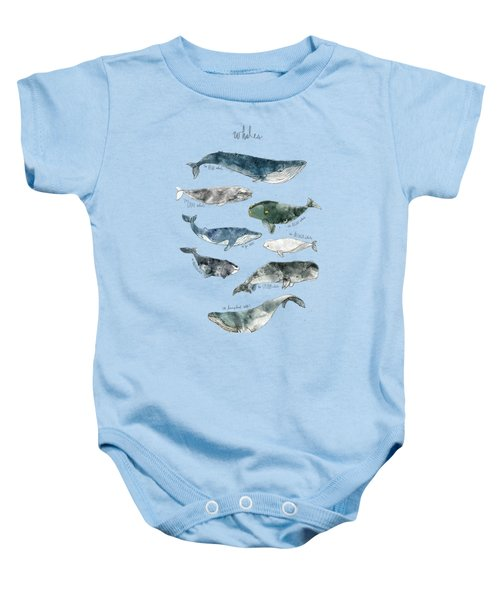 Whales Baby Onesie by Amy Hamilton