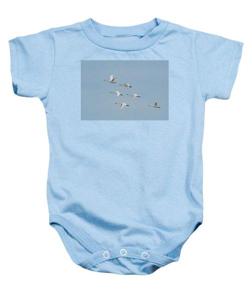 Whistling Swan In Flight Baby Onesie