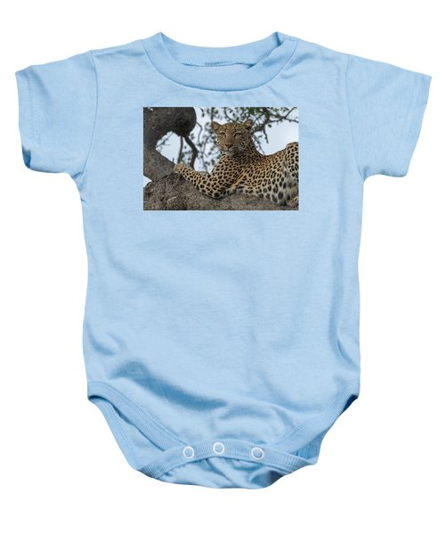 A Leopard Gazes From A Tree Baby Onesie