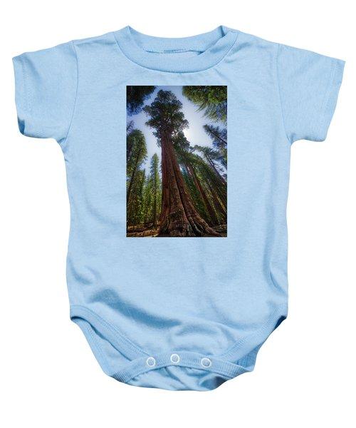 Giant Sequoia Tree Baby Onesie