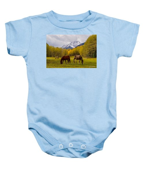 Grazing In Aspen Baby Onesie