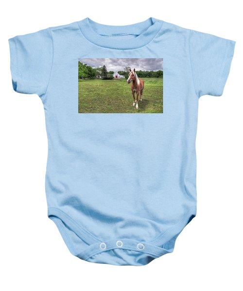 Horse In Pasture Baby Onesie
