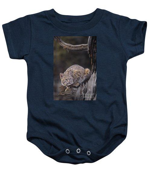 Crouching Bobcat Montana Wildlife Baby Onesie
