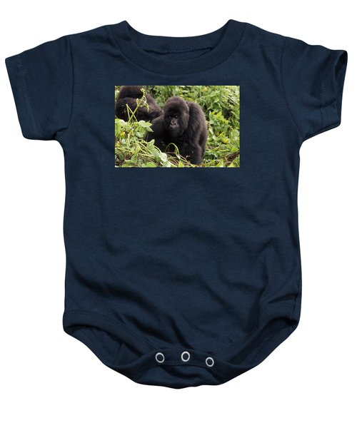Mountain Gorilla Female Virunga Baby Onesie