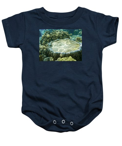 Table Top Coral Baby Onesie