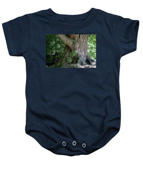 Big Fat Tree Trunk Baby Onesie