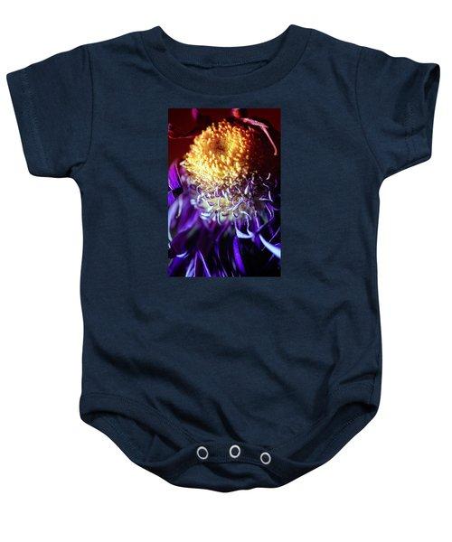 Dying Purple Chrysanthemum Flower Background Baby Onesie