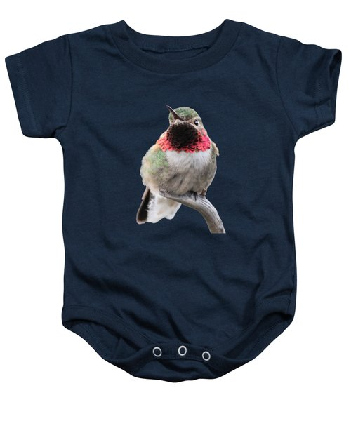 Broad-tailed Hummingbird Baby Onesie