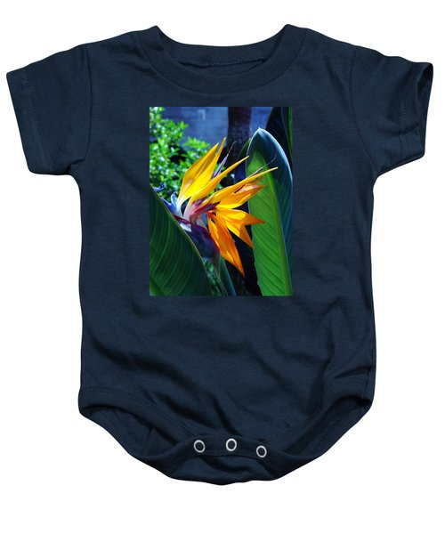Bird Of Paradise Baby Onesie