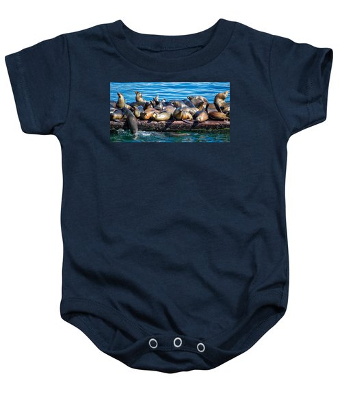 Sealions On A Floating Dock Another View Baby Onesie