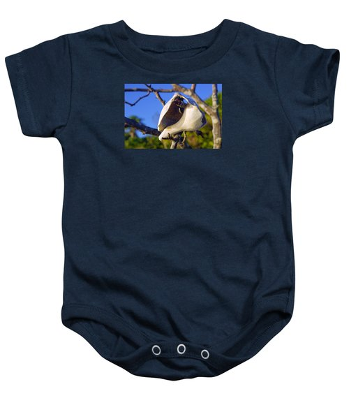 Shell On Brach Of Mangrove Tree At Barefoot Beach In Napes, Fl Baby Onesie