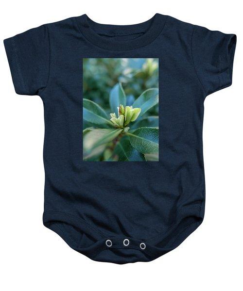 Softly Blooming Baby Onesie