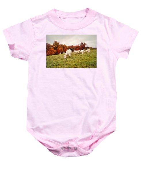 Autumn Pastures Baby Onesie