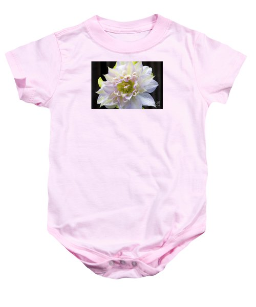 Clematis 'belle Of Woking' Baby Onesie