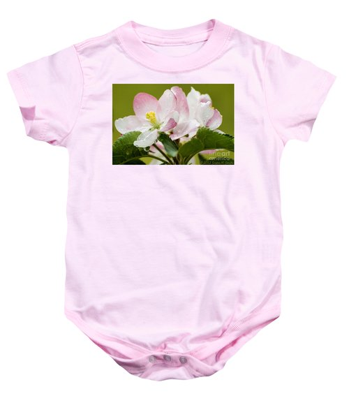 Apple Blossoms Baby Onesie