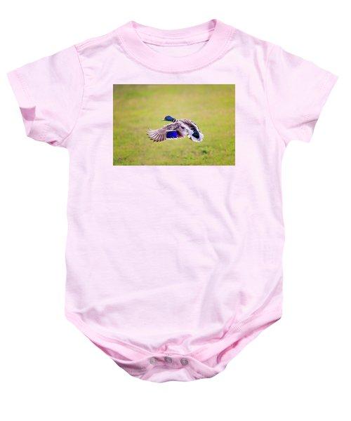 Duck-drake Baby Onesie