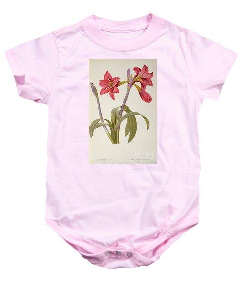 Amaryllis Brasiliensis Baby Onesie