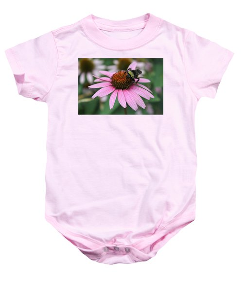 Bumble Bee On Pink Coneflower Baby Onesie