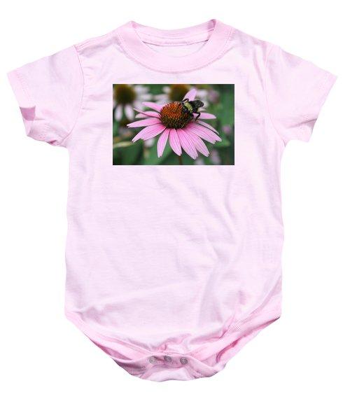 Bumble Bee On Pink Coneflower Baby Onesie