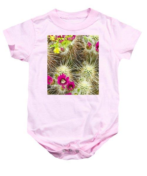Cholla Cactus Blooms Baby Onesie