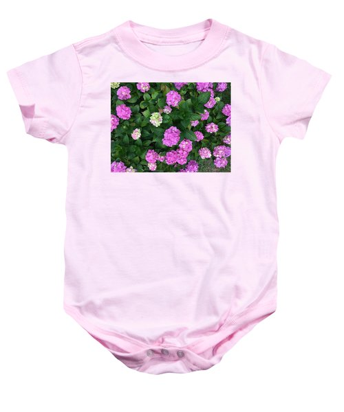 Baby Onesie featuring the photograph Spring Explosion by Pedro Fernandez