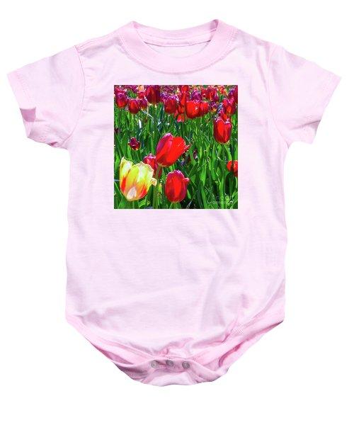 Tulip Garden In Bloom Baby Onesie