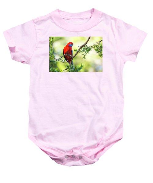 Crimson Rosella Baby Onesie