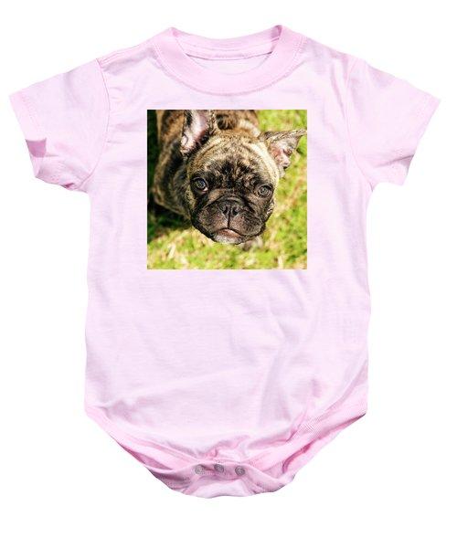 French Bull Dog Baby Onesie