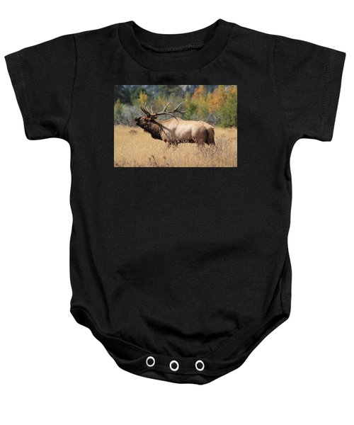 Bugling Bull Baby Onesie