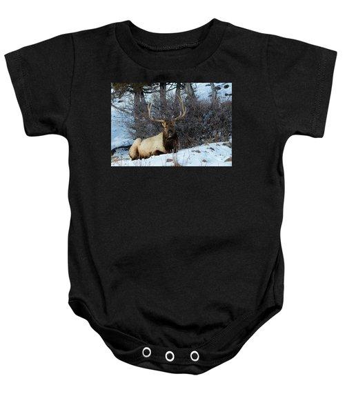 Rocky Mountain Elk Baby Onesie