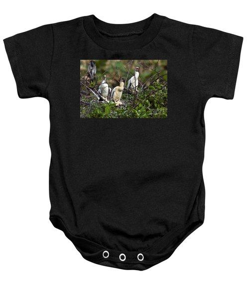Baby Anhinga Baby Onesie by Mark Newman