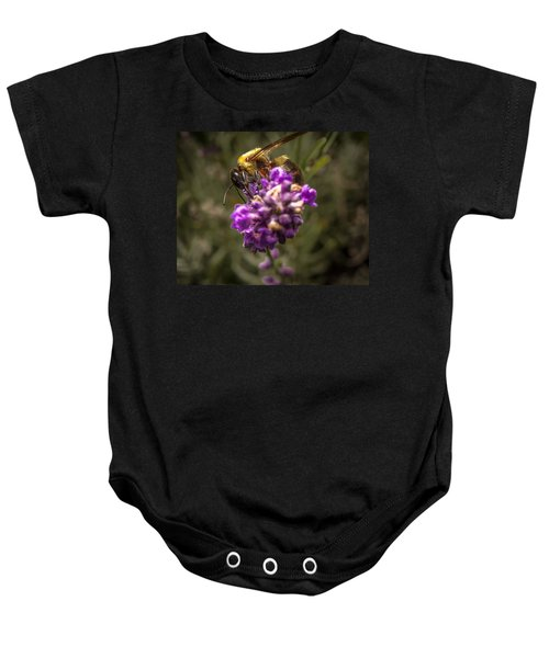 Carpenter Bee On A Lavender Spike Baby Onesie
