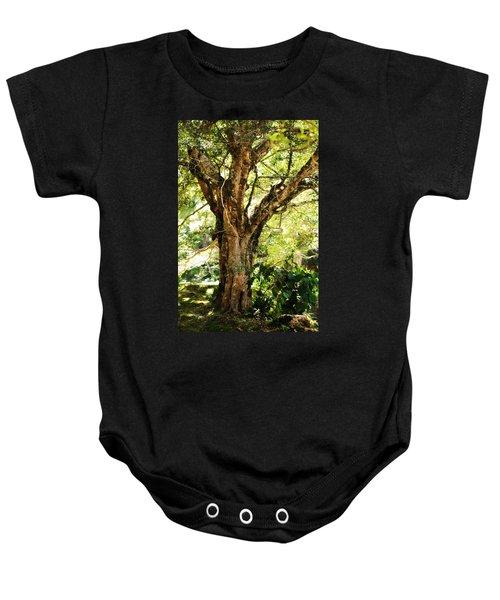 Kingdom Of The Trees. Peradeniya Botanical Garden. Sri Lanka Baby Onesie