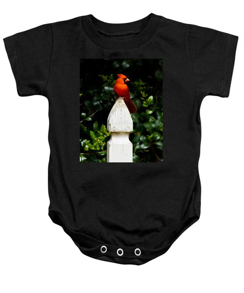 Male Cardinal Baby Onesie