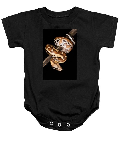 Blood Python Python Brongersmai Baby Onesie by David Kenny