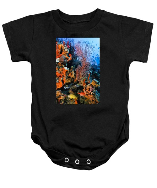 A Colorful Ledge Baby Onesie