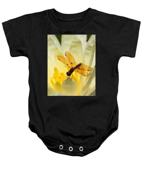 Amber Dragonfly Dancer Baby Onesie