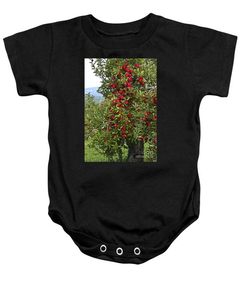 Apple Tree Baby Onesie