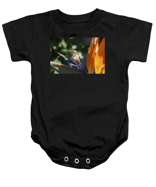 Baby Hummingbird On Flower Baby Onesie