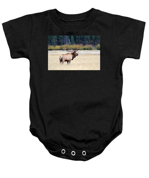 Big Colorado Bull Baby Onesie