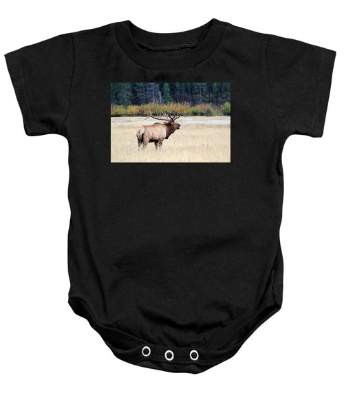 Big Colorado Bull Baby Onesie
