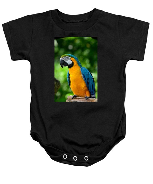 Blue And Yellow Gold Macaw Parrot Baby Onesie