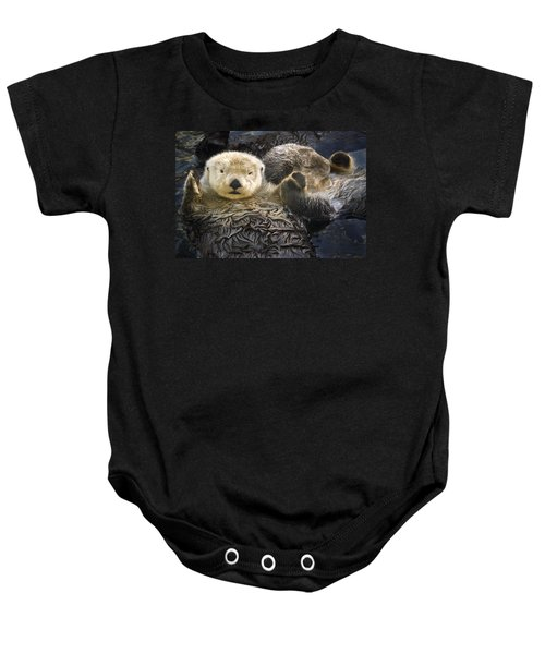 Captive Two Sea Otters Holding Paws At Baby Onesie