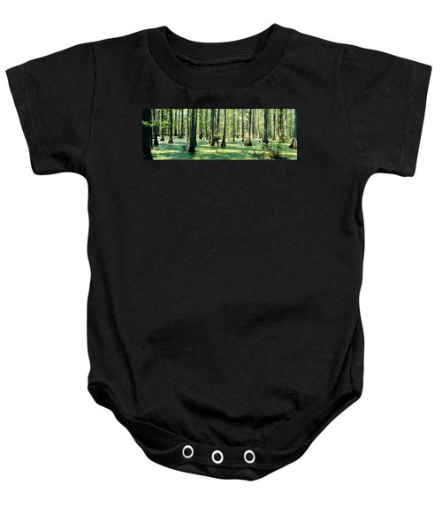 Cypress Trees In A Forest, Shawnee Baby Onesie